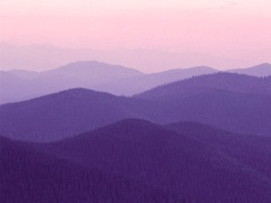 purple_hills_by_beth25491white-d3c42a6